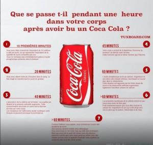 coach-nutriion-coca-cola